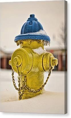 Frozen Fire Hydrant Canvas Print by Brett Engle