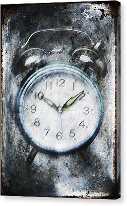 Frozen In Time Canvas Print by Skip Nall