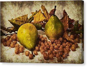 Autumn Still Life Canvas Print by Angela Doelling AD DESIGN Photo and PhotoArt