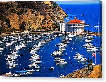 Full Bay Canvas Print by Cheryl Young