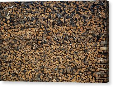 Full Frame Shot Of Firewood Pile Canvas Print by Panoramic Images