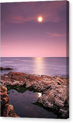 Full Moon Reflection Canvas Print by Juergen Roth