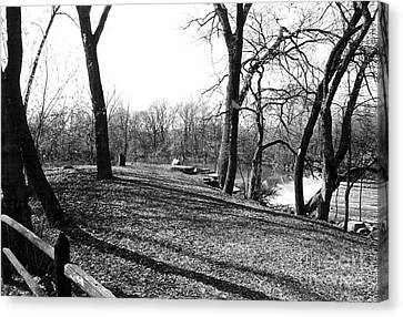Fullersburg Woods Landscape In Black And White Canvas Print by ImagesAsArt Photos And Graphics