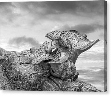Funky Fungi Black And White Canvas Print by Gill Billington