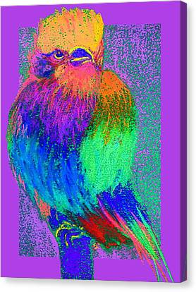 Funky Lilac Breasted Roller Bird Art Prints Canvas Print by Sue Jacobi