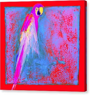 Funky Rainbow Parrot Art Prints Canvas Print by Sue Jacobi