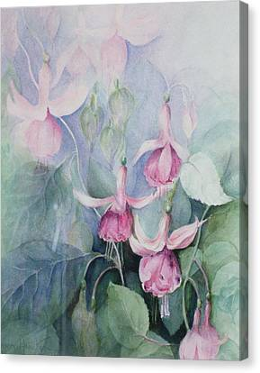 Fucshia, Pink Coachman Canvas Print by Karen Armitage