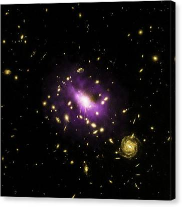 Galaxy Cluster Rx J1532 Canvas Print by Nasa/cxc/stanford/j.hlavacek-larrondo Et Al/esa/stsci/m.postman And Clash Team
