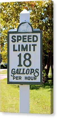 Gallops Per Hour Canvas Print by Cynthia Guinn