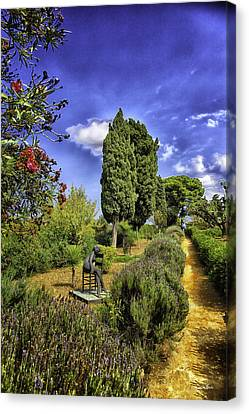 Garden Of Dreams Canvas Print by Madeline Ellis