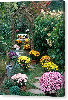 Garden Path With Potted Plants Canvas Print by Hans Reinhard