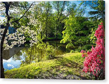 Garden State Spring At The Canal Canvas Print by George Oze