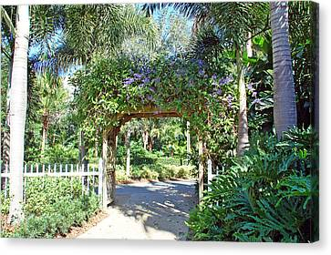 Garden Walkway Canvas Print by Aimee L Maher Photography and Art Visit ALMGallerydotcom