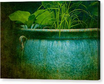 Gardenscape Canvas Print by Amy Weiss