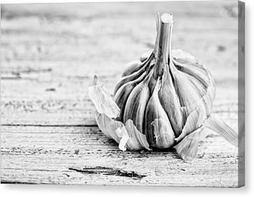 Garlic Canvas Print by Nailia Schwarz