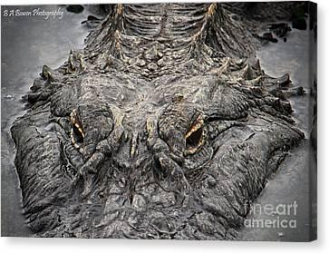 Gator Eyes Canvas Print by Barbara Bowen