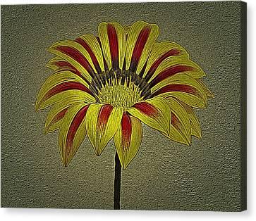 Gazania Flower Photographic Art Canvas Print by David Dehner