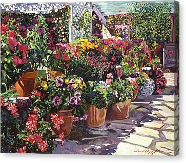 Gazebo Garden Canvas Print by David Lloyd Glover