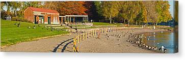 Geese Gathering In Blue Lake Regional Canvas Print by Panoramic Images