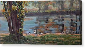 Sunbathing Geese Canvas Print by Celeste Drewien