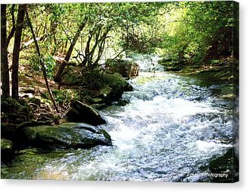 Georgia Water Canvas Print by Tim Hall