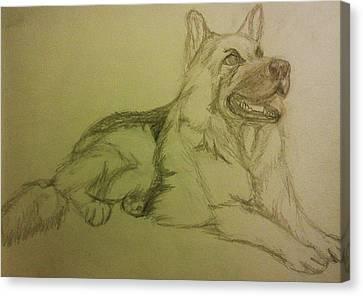 German Shepherd Canvas Print by Christy Saunders Church