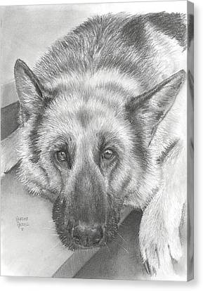 German Shepherd Canvas Print by Heather Gessell