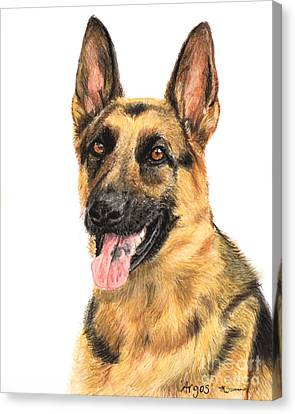 German Shepherd Painting Portrait  Canvas Print by Kate Sumners