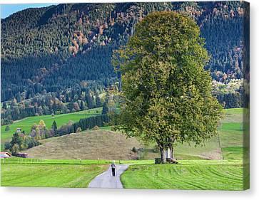 Germany, Bavaria, Halblech, Alpine Canvas Print by Walter Bibikow