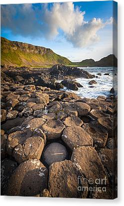 Giant's Causeway Circle Of Stones Canvas Print by Inge Johnsson