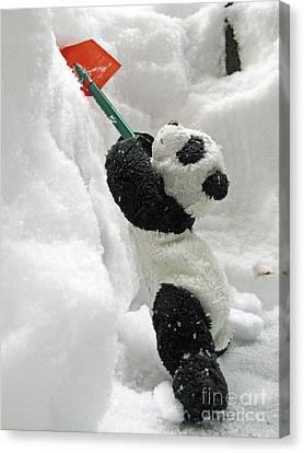 Ginny The Baby Panda In Winter #01 Canvas Print by Ausra Huntington nee Paulauskaite