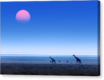 Giraffes On Salt Pans Of Etosha Canvas Print by Johan Swanepoel