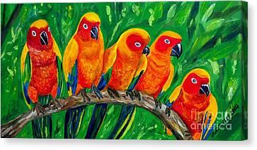 Girl Watchers  - Sun Conures Canvas Print by Julie Brugh Riffey