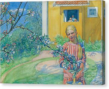 Girl With Apple Blossom Canvas Print by Carl Larsson