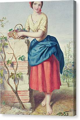 Girl With Basket Of Grapes Canvas Print by Jules I Bouvier