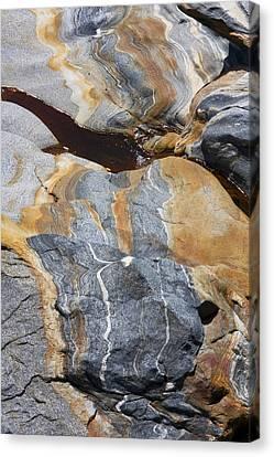 Glacial Pothole IIi Canvas Print by Michael Friedman