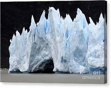 Glaciar Grey Patagonia Chile 3 Canvas Print by Bob Christopher