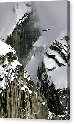Glacier Pilot & Plane In Ak Range Canvas Print by Jeff Schultz