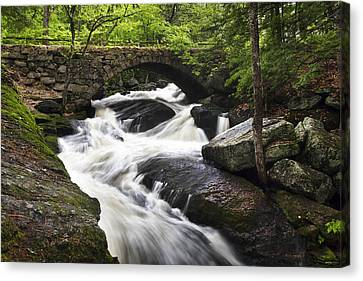 Gleason Falls Canvas Print by Eric Gendron