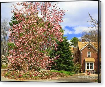Glimpses Of Spring Canvas Print by Dora Sofia Caputo Photographic Art and Design
