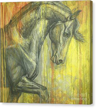Glorious Canvas Print by Silvana Gabudean