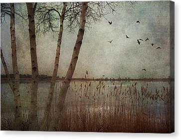 Gloucester Morning Canvas Print by Joann Vitali