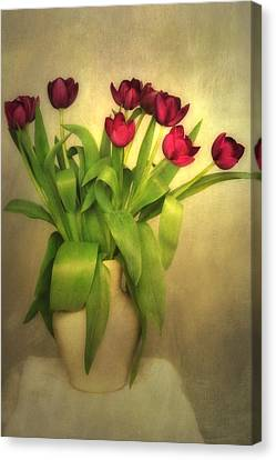 Glowing Tulips Canvas Print by Annie Snel