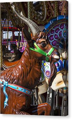 Goat Carrousel Ride Canvas Print by Garry Gay