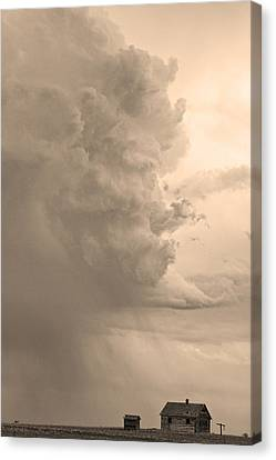 Gobbled Up By A Storm  Sepia Canvas Print by James BO  Insogna