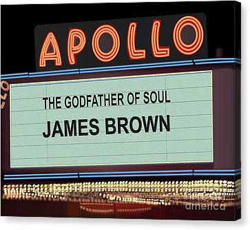 Godfather Of Soul Canvas Print by Michael Lovell
