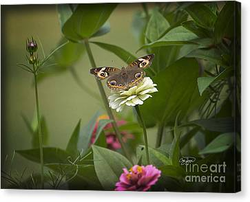 God's Paintbrush Canvas Print by Cris Hayes