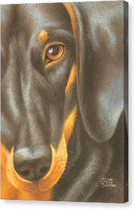 Goggie Daschund Canvas Print by Karen Coombes