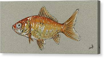 Gold Fish Canvas Print by Juan  Bosco