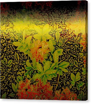 Gold Sheet Floral 2 Canvas Print by Patricia Keith